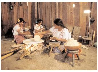 A Tzotzil mother makes tortillas with her daughters. The Tzotzil live in Chiapas, Mexico, near Guatemala. Central Americans traditionally have simple diets that depend on corn, beans, and local fruits and vegetables. [© Corbis. Reproduced by permission.]