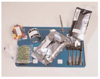 A Space Shuttle meal tray includes scissors to cut open food packages and Velcro to hold them in place. The tray itself is secured to the wall or to an astronaut's lap to keep it from drifting away. [NASA. Reproduced by permission.]