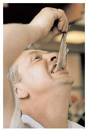 A Dutch man eats raw herring, which is a delicacy in the Netherlands. Seafood is an important part of the Scandinavian diet, but it is not always eaten raw. Popular preparations include smoking, drying, pickling, and salting. [AP/Wide World Photos. Reproduced by permission.]